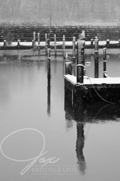 Chesapeake Beach Jax Photography ONE