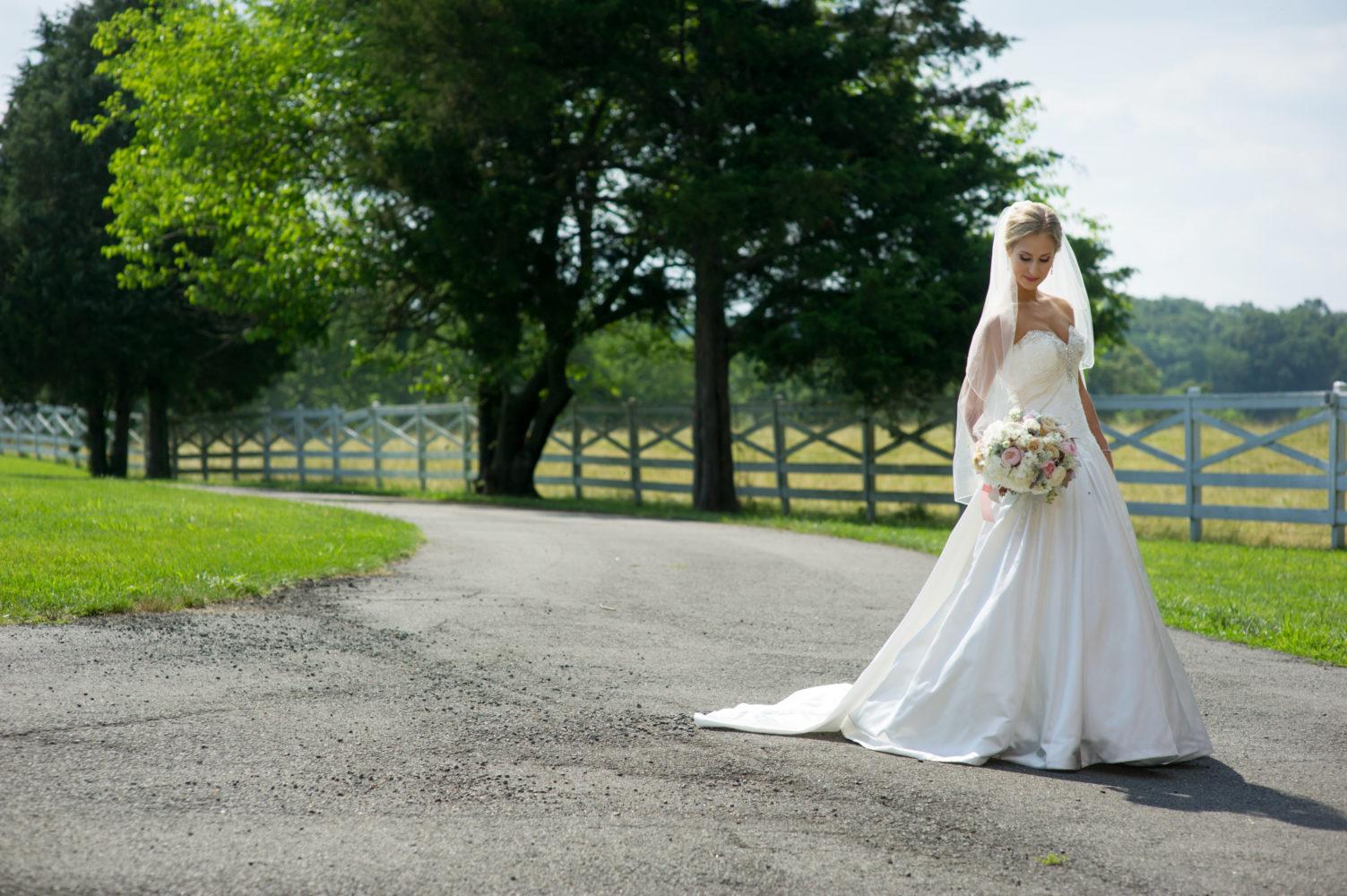 high end wedding photography virginia maryland dc destination pr