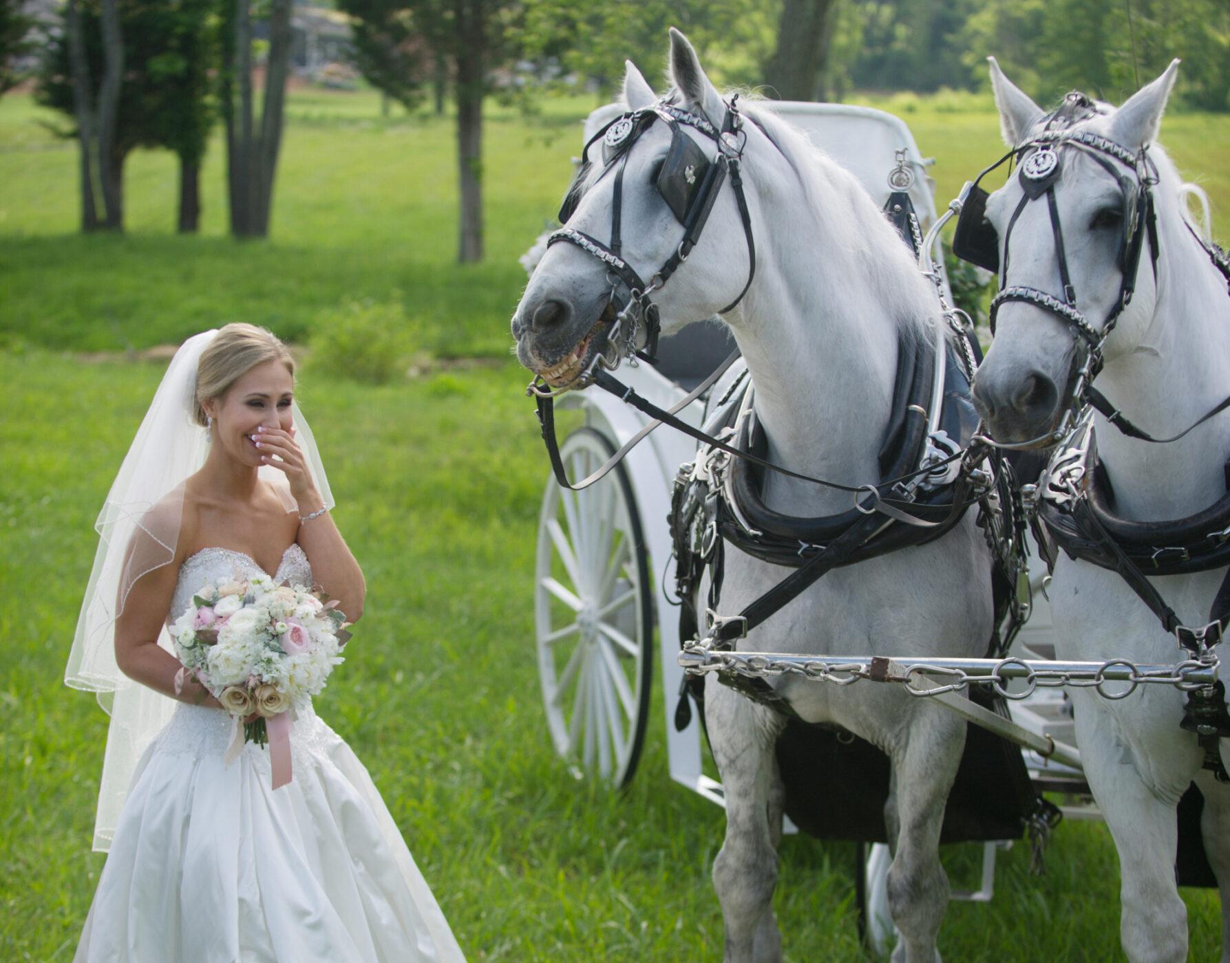 real wedding photography dc destination wedding photojournalists