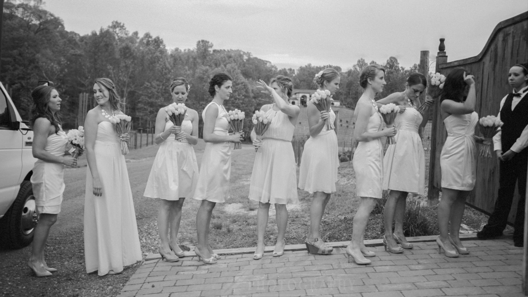 bridesmaids Running Hare Vineyard